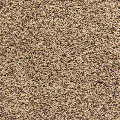 Linoleum City - frieze carpet swatch